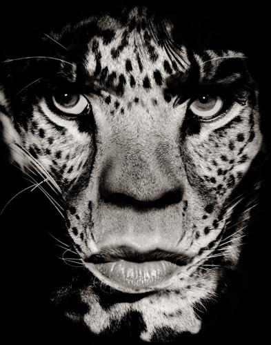 Mick Jagger by Albert Watson